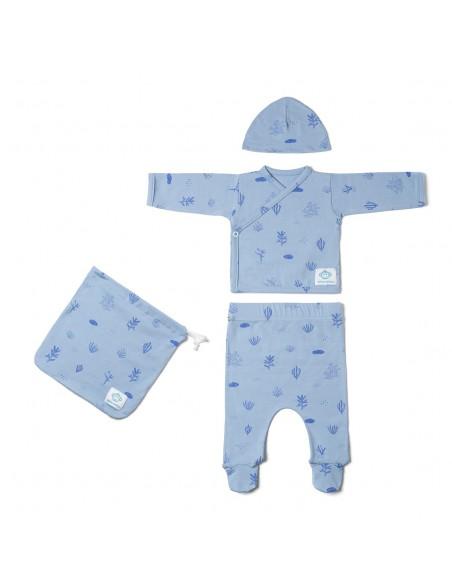 Primera puesta bebé Algas azul